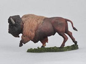 Galloping Buffalo