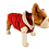 Thumbnail: Red Dog Factor Sensation Dog Vest Pet Apparel Waterproof Windproof Rev
