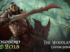 Day 5 - LOTR LCG The Woodland Realm