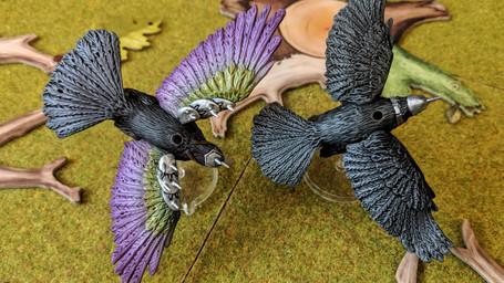 Rook & Hook Beak.jpg