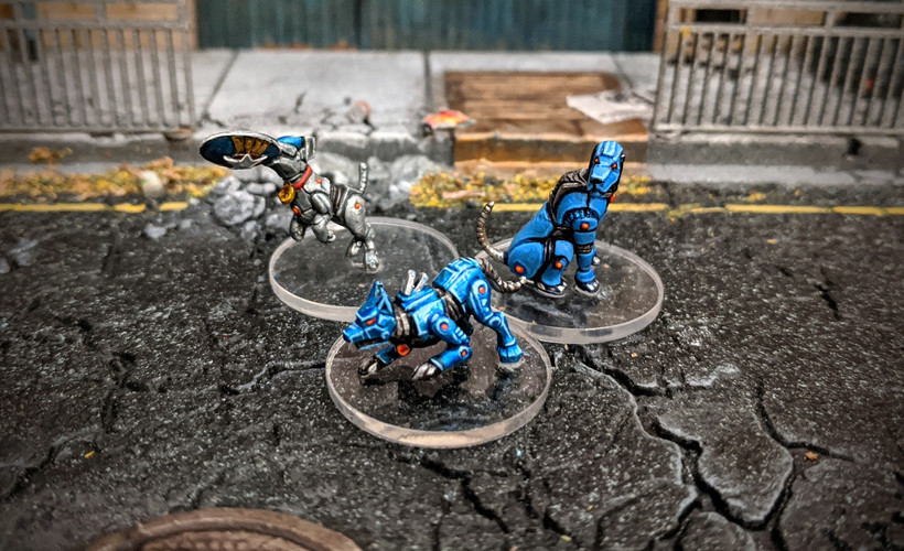 Robo Dogs.jpg