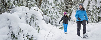 women-snowshoeing.jpg