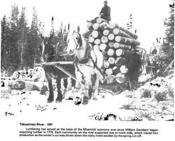 Logging Tabusintac River 1891.jpg