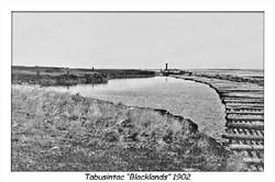 Tabusintac Blacklands 1902.jpg