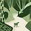 Thumbnail: WOODS - Giclée Print