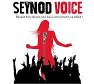 Deessed1jour habitée les invités de The Voice Seynod
