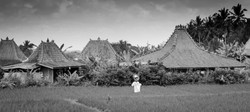 Scarecrow 2013 Bali