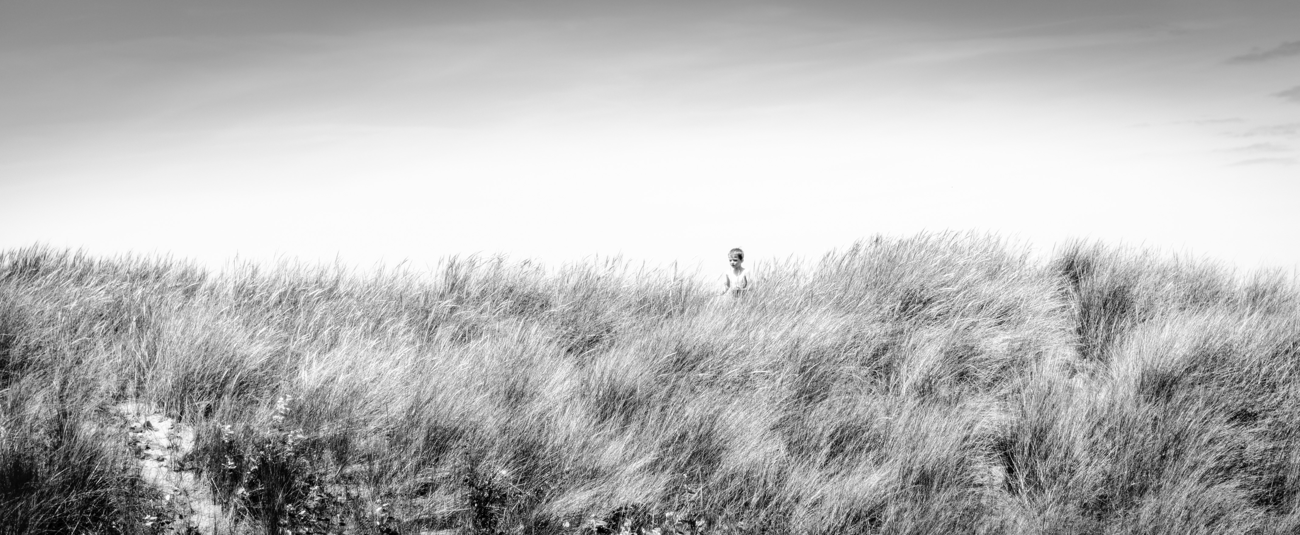 Dune 2013 Knokke