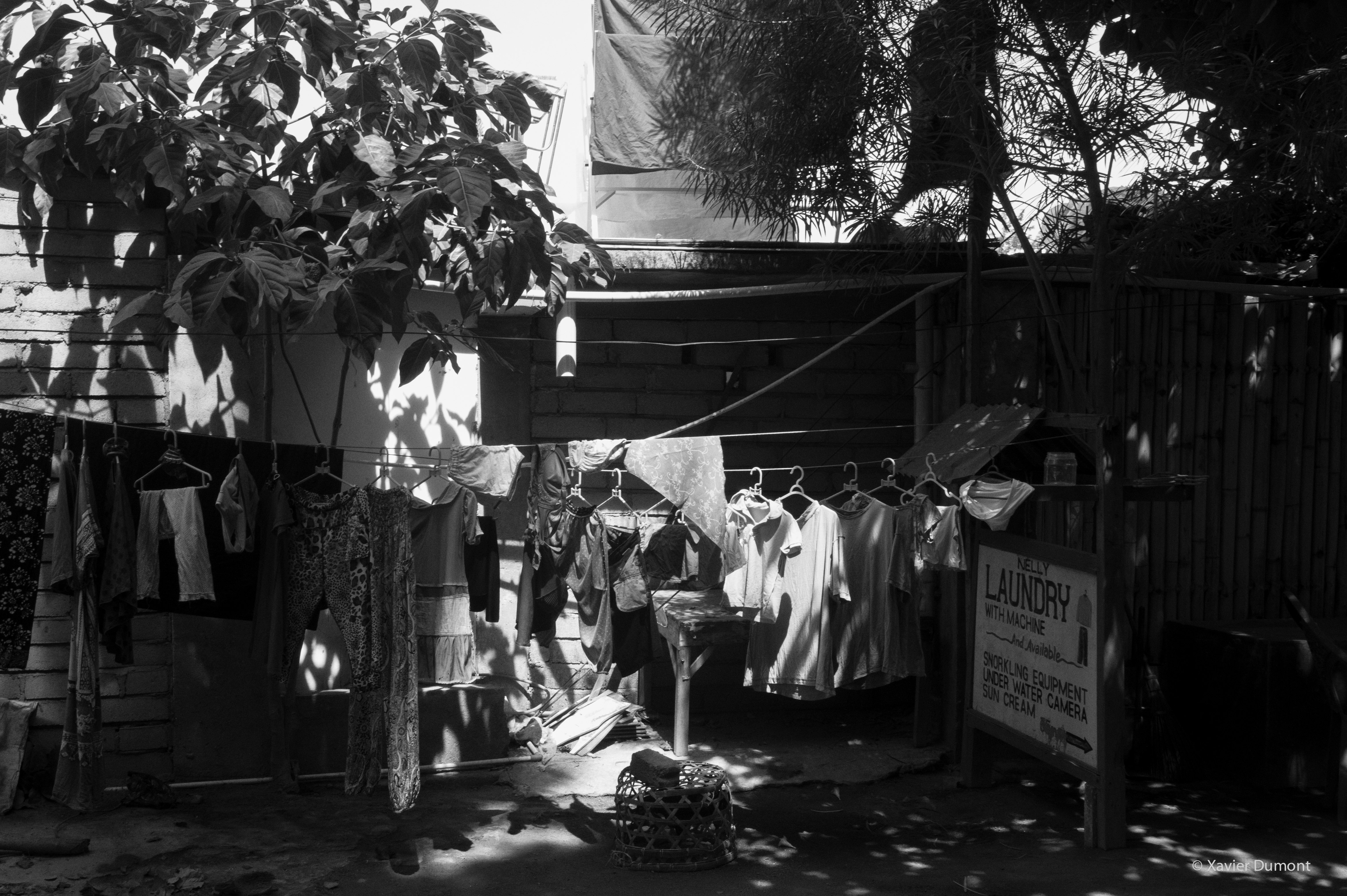 Nelly's Laundry, 2014, Gili