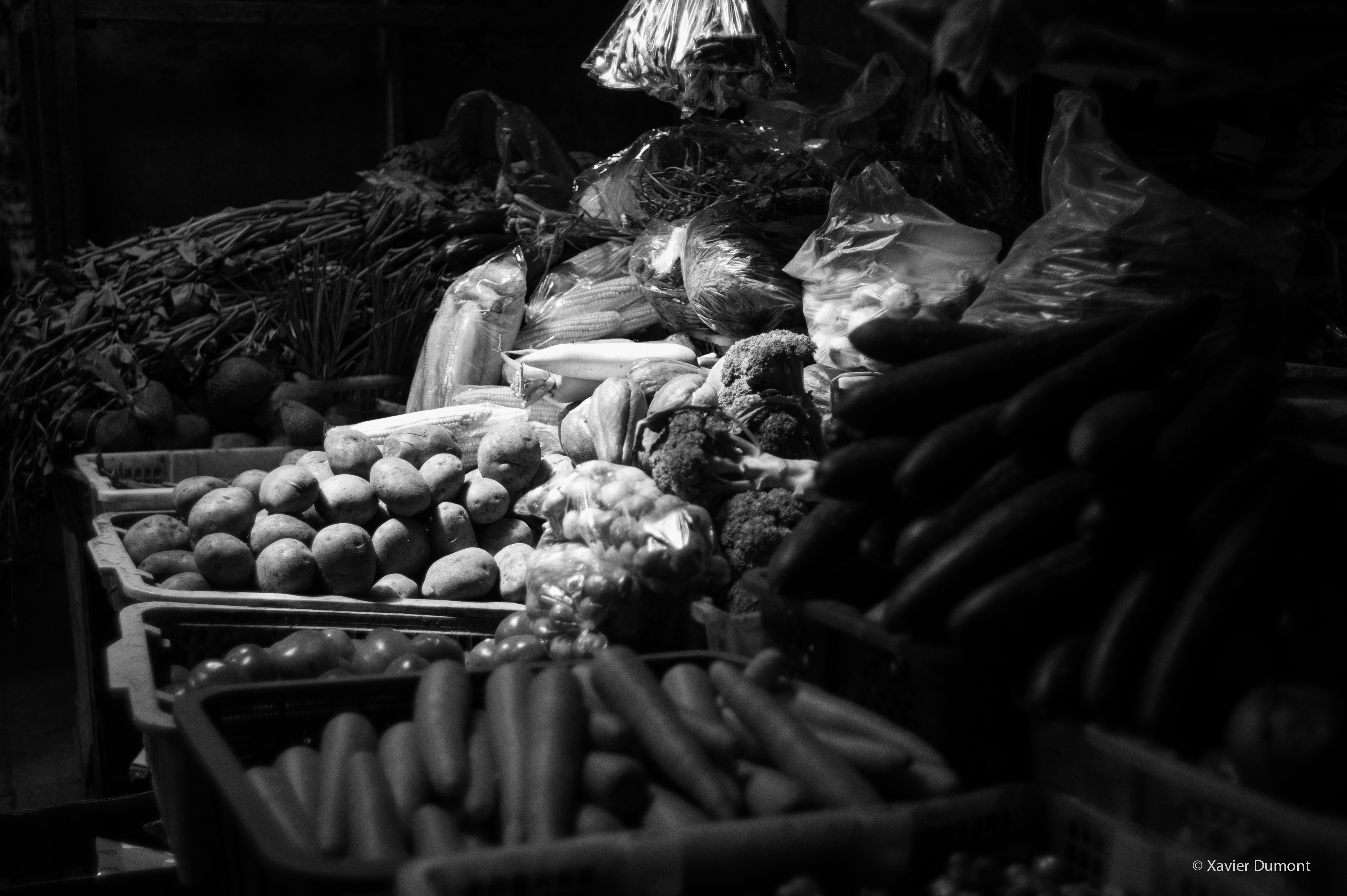 Still Life-2014-Bali