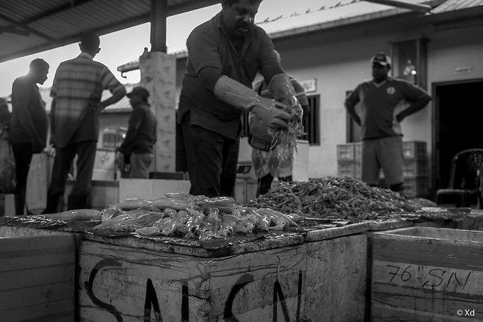 Big Fish Sri Lanka, 2018, Negombo-12.jpg
