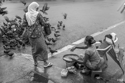 the Seed Seller, 2017, Yangon