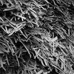 Steel Chips  -2014 - Lille