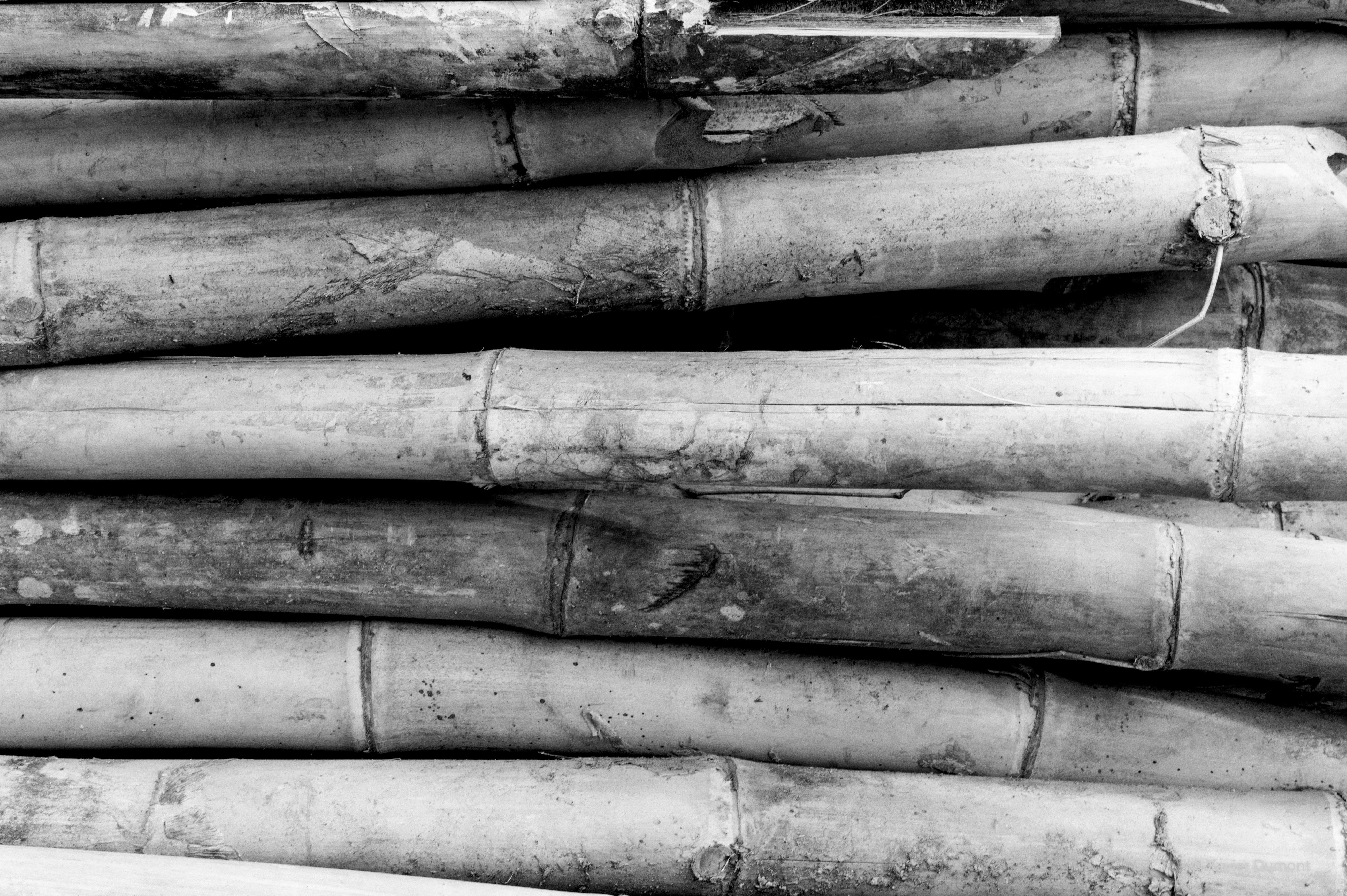 bambu-2014-Bali