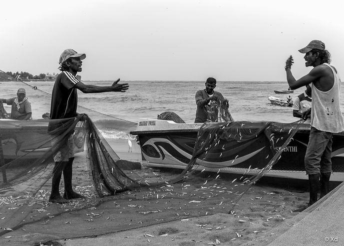 Sri Lanka, 2018, Negombo-4.jpg