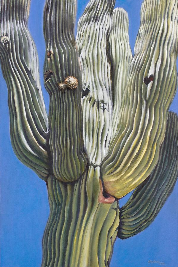 Gladu-SaguaroCactus.jpg
