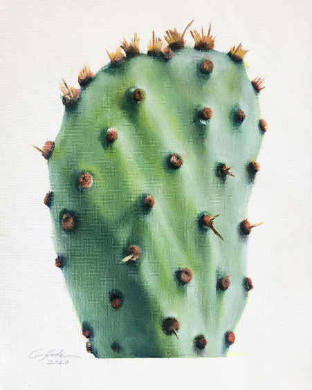PRICKLY PEAR PORTRAIT - one