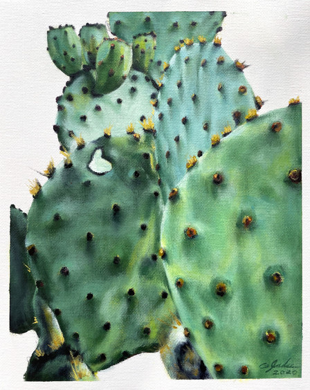 TEXAS PRICKLY PEAR - party