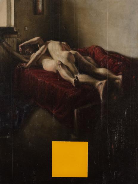 Vermeer at Home