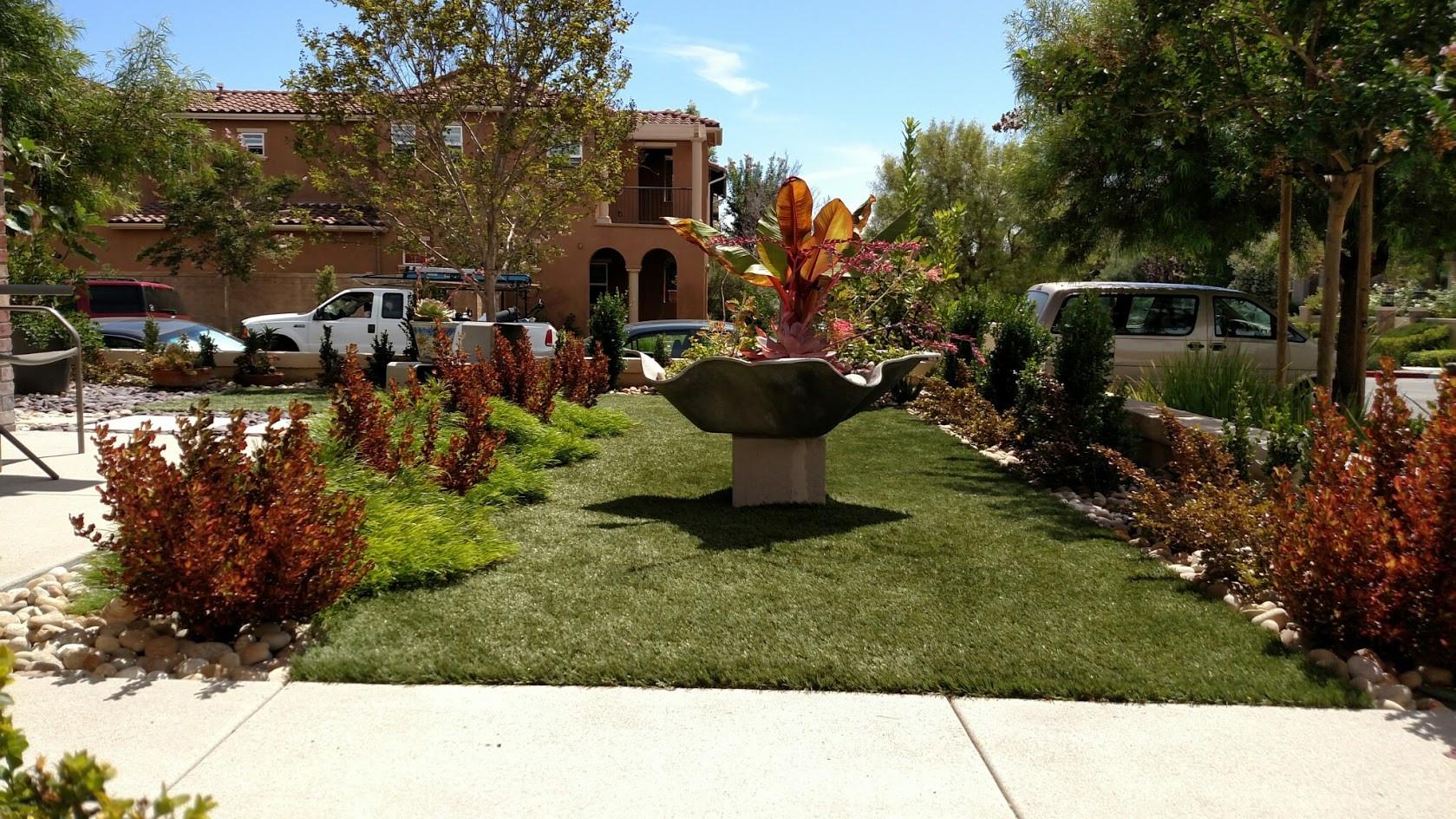 The Tropics in your front garden