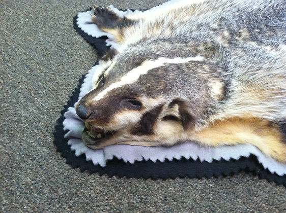 Badger Rug