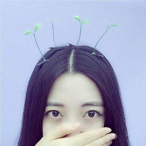 Planta Cabeza / Head Plant WH120