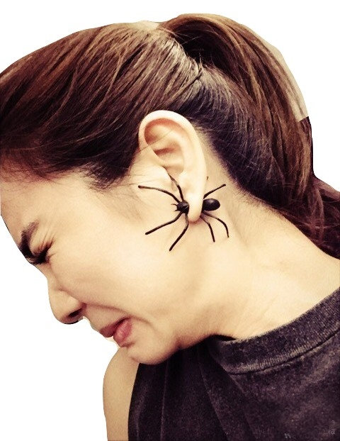 Pendiente Araña / Spider Earring WH297