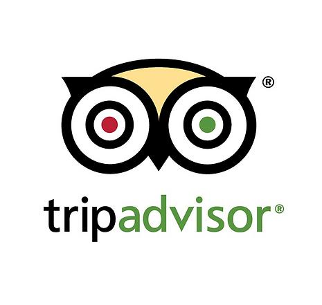 logo-tripadvisor-testimonial-712x675.png