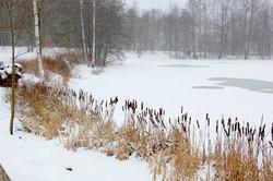 Schön auch im Winter