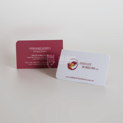 Distant Horizons business cards