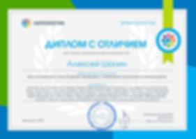 Диплом по SEO-продвижению сайтов
