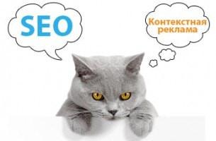 Зачем SEO-специалисту контекстная реклама в Яндекс.Директ?