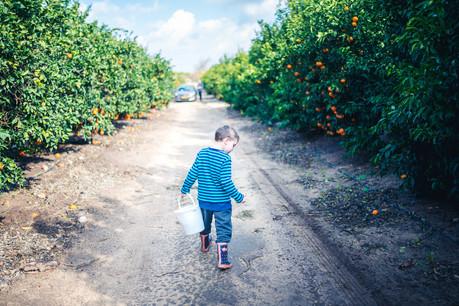 צילומי ילדים | עמק חפר והסביבה