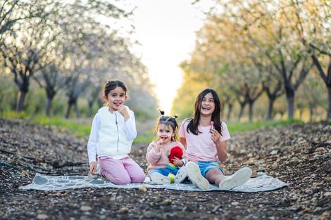 צילומי משפחה בשקדיות