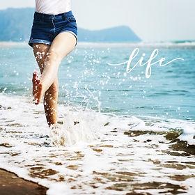 life theme.JPG