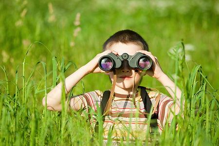 Young boy in a field looking through bin