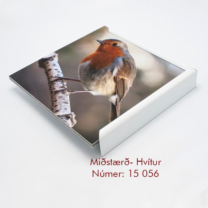 15 056 miðstærð hvítur.jpg