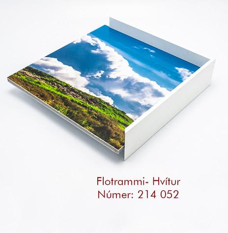 214 052 flotrammi.jpg