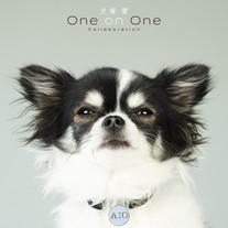 2021.02.03_ Ai Otsuka / One on One Collaboration [AL]