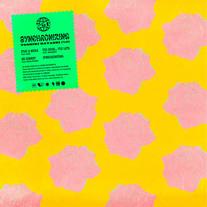 2020.09.18_TOSHIKI HAYASHI(%C) / Synchronizing [EP]