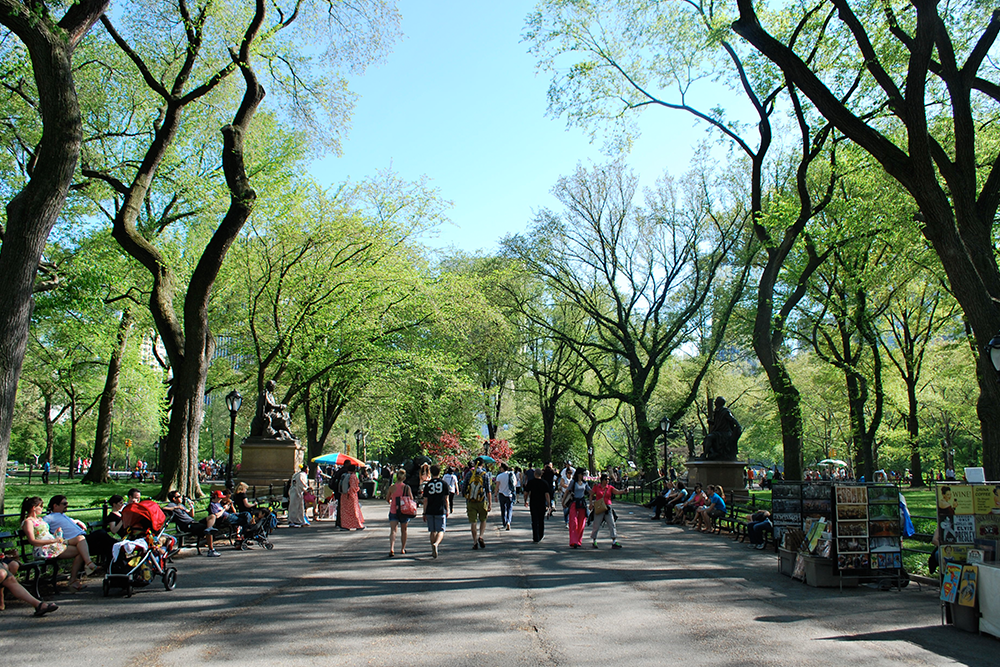 Central-Park-Walking-Tours-1.png