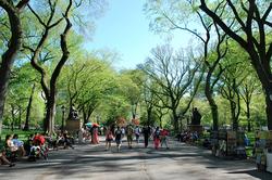 Central-Park-Walking-Tours-1.png