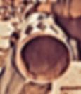 warup pic 3.jpg