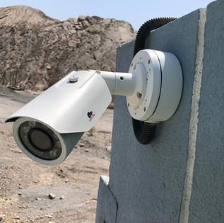 CCTV for Camel Farms