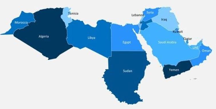 MENA MAP.JPG
