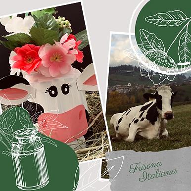 Frisona Italiana (2).png