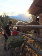 bambini-in-fattoria-didattica-maso-simon