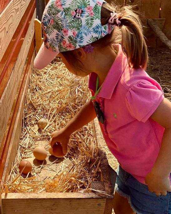bimbi-fattoria-didattica-val di non-tren