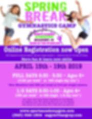 spring break gym camp 2019 (1).jpg
