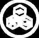 icon-isv-process-white.png